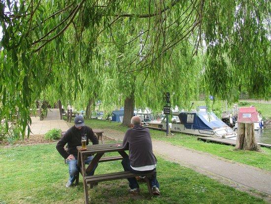 Upstreet, UK: garden