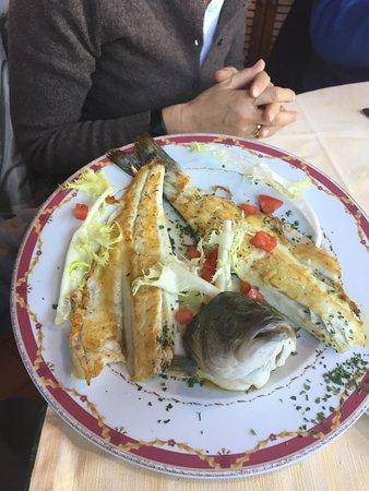 Ristorante La Pineta: Un secondo di pesce: il branzino