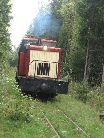 Viimsi, Estonia: functional train