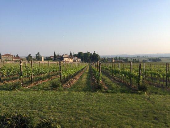 Sant'Ambrogio di Valpolicella, Italia: photo0.jpg