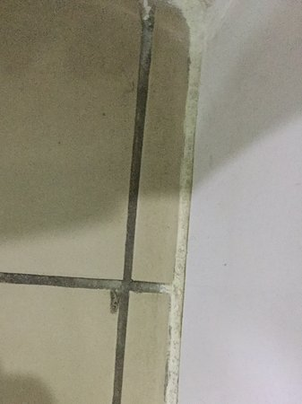 Novotel Nadi: More filthy tiles and grout