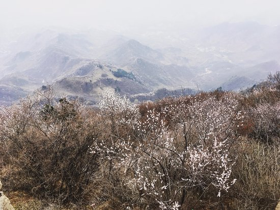 The Great wall of Jiankou-The Great Wall Alternative : Just some more gorgeous views