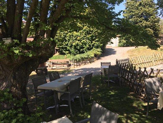 Amberieu-en-Bugey, فرنسا: la terrasse sous le tilleul
