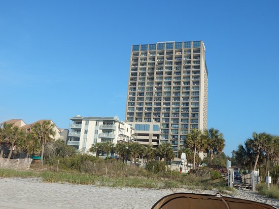 Ocean Forest Plaza: Picture of hotel from beach