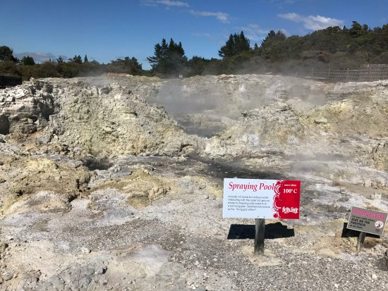 Amazing Day Tours: Hell's Gate Geothermal area
