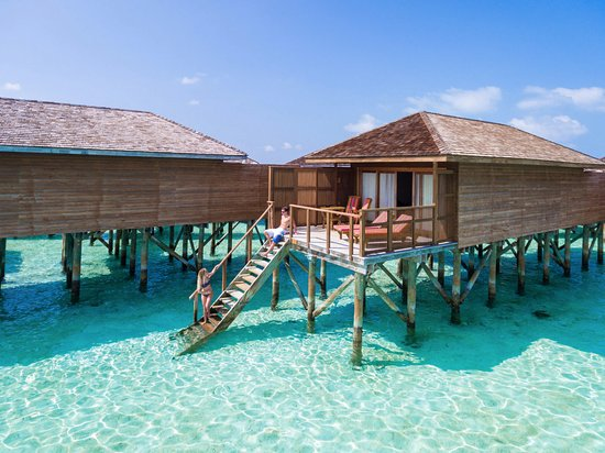Meeru Island Resort Spa Reviews Price Comparison