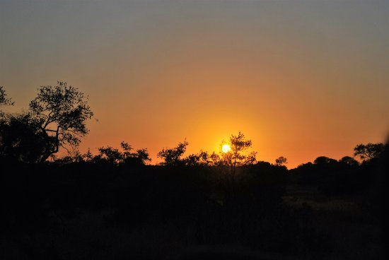 Honeyguide Tented Safari Camps: Sunrise