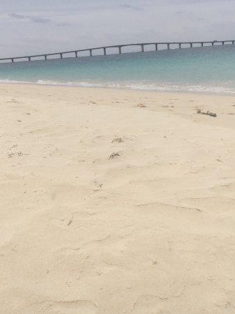 Yonaha Maehama Beach: photo1.jpg
