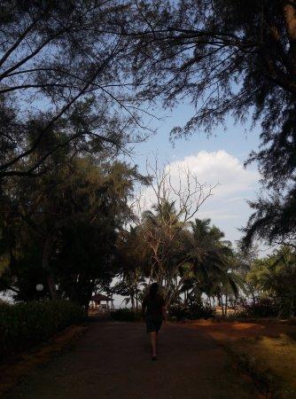 Varca Palms Beach Resort: Тропинка отеля к морю