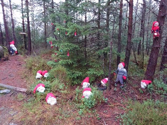 Stord Municipality, Norway: Eventyrskogen høsten 2016