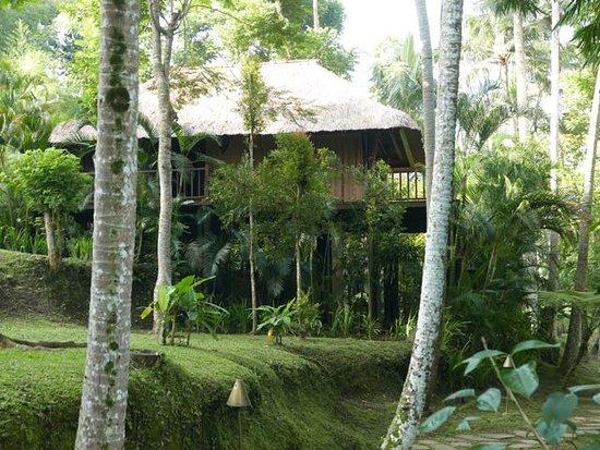 Kayumanis Ubud Private Villa & Spa: SPA