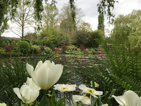 Claude Monet's House and Gardens: photo9.jpg
