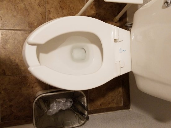 Willows, CA: pinching toilet seat