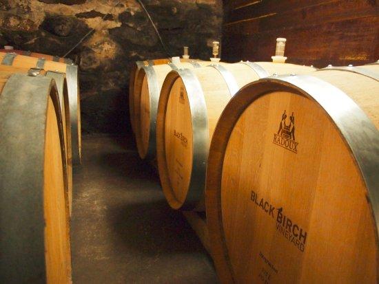 Hatfield, MA: barrels