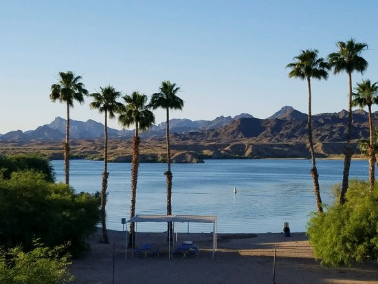 Lake Havasu City, AZ: 2198_large.jpg