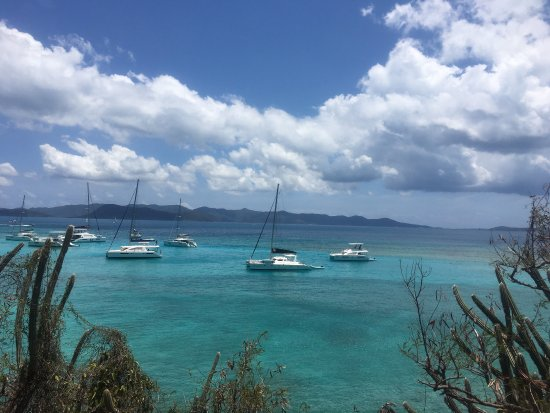 White Bay: photo0.jpg