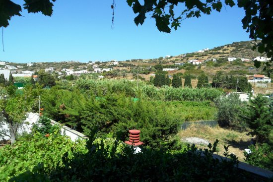 Batsi, Grecja: Grounds and gardens around