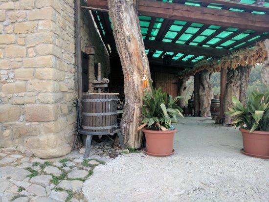 Agriturismo Beneverchio: Outside the restaurant / lodge.