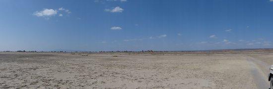Djibouti: kimneys