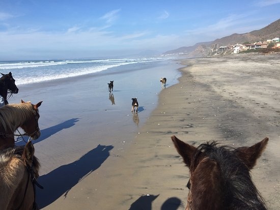 La Mision, المكسيك: Beach part of the ride