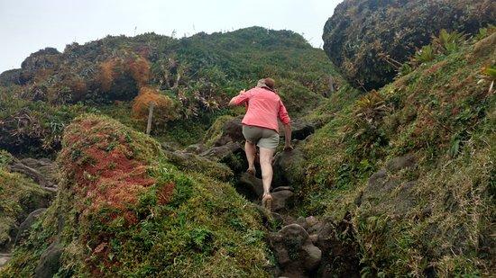 Parc National, Guadeloupe: climb up