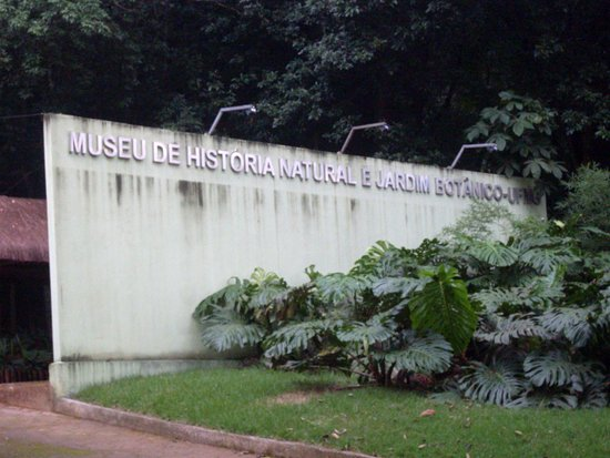 UFMG Natural History museum and Botanic Gardens