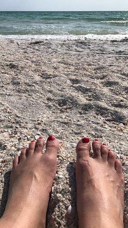 Lido Beach: crushed shell beach