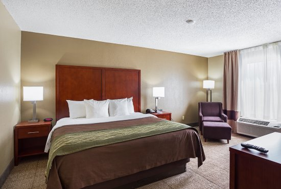 Comfort Inn Baton Rouge Photo