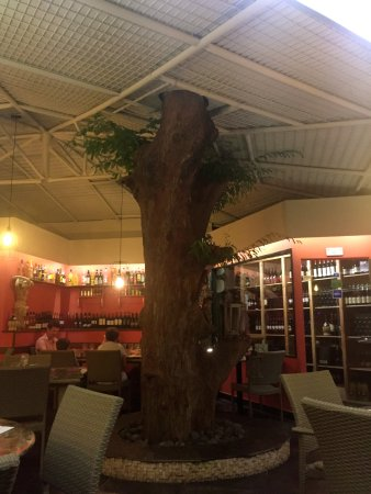 Cul de Sac, St. Maarten: Entrance to the restaurant with a tree going through the ceiling!