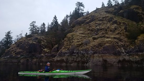 Powell River, Canada: paddling Desolation Sound, BC, and yes, there is a bald eagle in the picture.