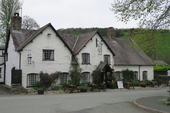 Llanarmon DC, UK: Picture from the front of the hotel
