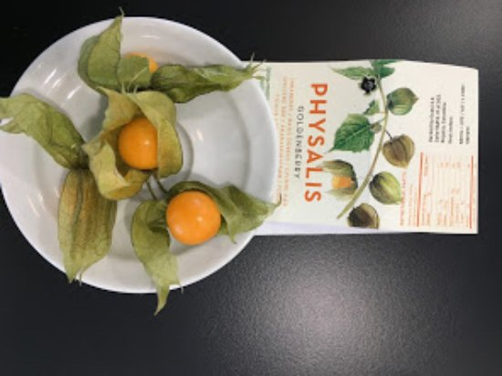Sophia Antipolis, Francia: Physalis, a fruit that kind Marisol from breakfast staff brought me.