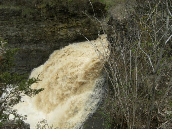 Rockway Falls: Lovely trail to the falls!