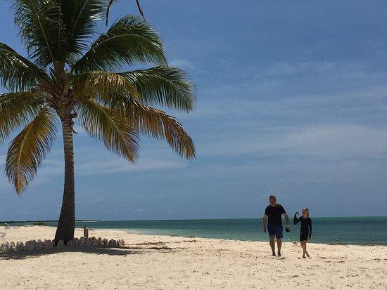 North Beach Picture