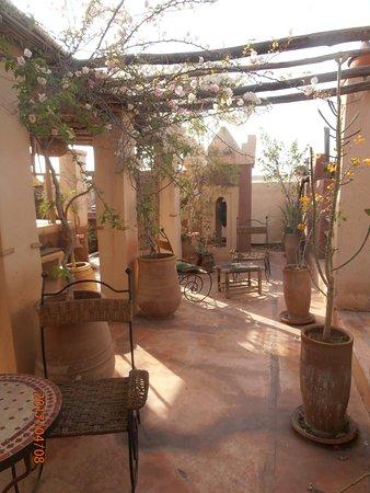 Riad les Inseparables: Bild der Terrasse, der Oase mitten in der Medina von Marrakesh