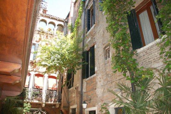 Hotel Flora: la cour intérieure