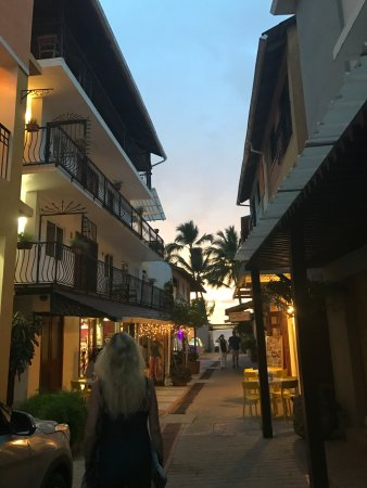 Cabarete, Dominik Cumhuriyeti: Each night Andreas arranged for us to eat at an amazing restaurant!