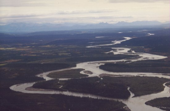 Bettles Lodge: Float plane rides from the Lodge