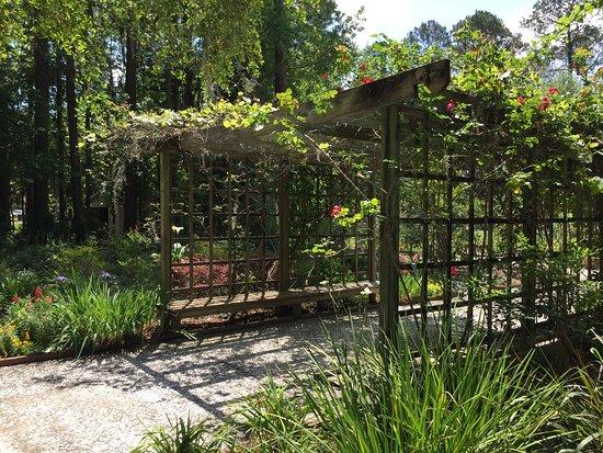 Picture Of Botanical Garden Savannah