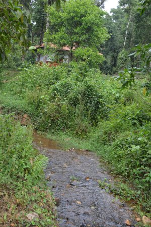 Landscape - Picture of The Kaduhithlu Resort, Sakleshpur - Tripadvisor