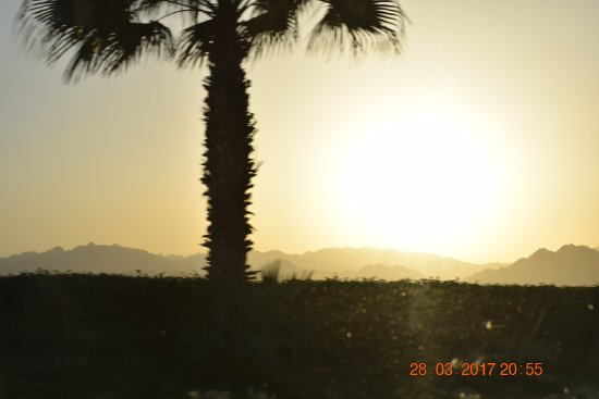 Dahab Safari Day Tours: Sun Set from one of the site at Sharm El Sheikh