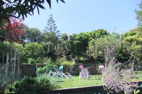 Sisco, France: Jardin en terrasse typique du Cap-Corse