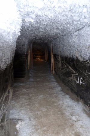 Tuktoyaktuk, แคนาดา: ice house