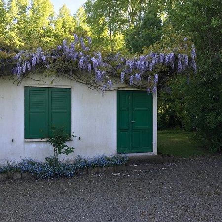 Parc des Marais Poitevin
