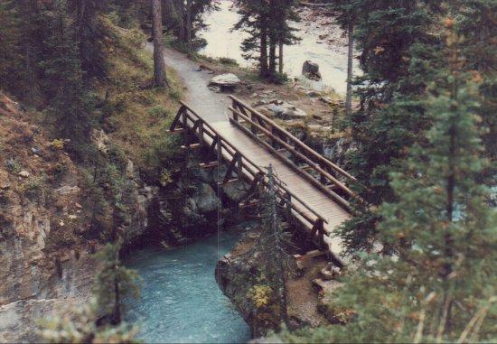 Kootenay National Park, Kanada: bridge, Vermilion River