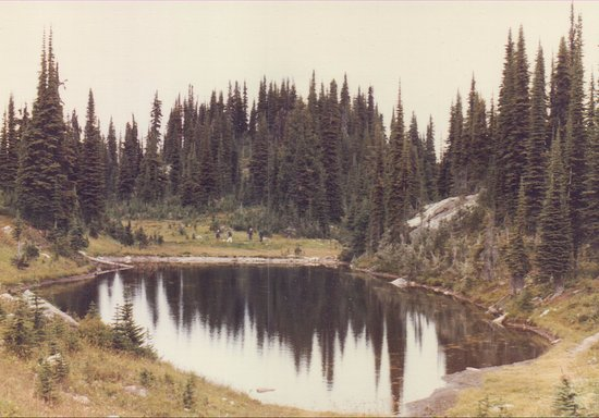 Mount Revelstoke National Park: small lake/pond