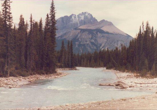 Yoho National Park, Canadá: river near bridge