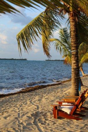 Turtle Inn : A view of the beach