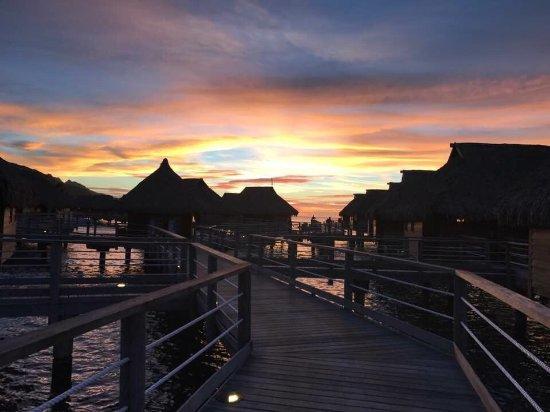 Manava Beach Resort & Spa - Moorea: Outstanding 👍