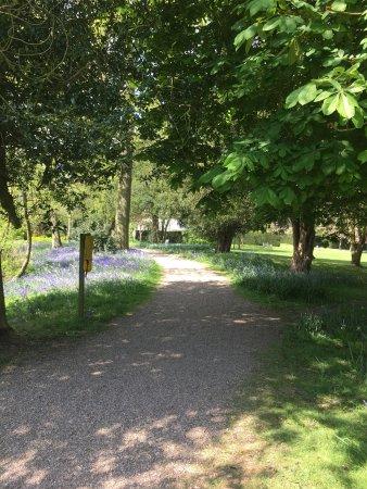 Alcester, UK: photo0.jpg